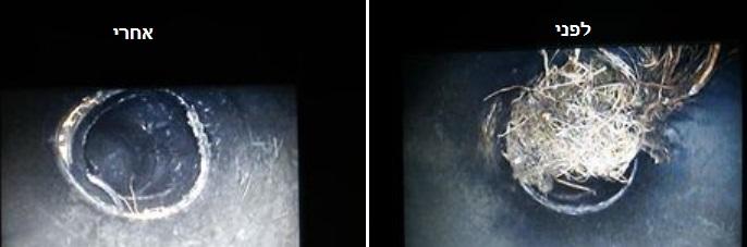 לפני ואחרי הסרת שורשים בביוב